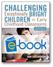 Challenging Exceptionally Bright Children (e-book)