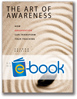 Art of Awareness, 2nd Edition (e-book)