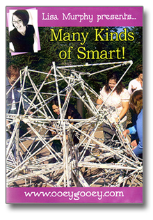 Many Kinds of Smart! DVD